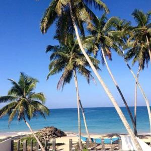 Auberges de jeunesse - Rainbow Beach Hotel