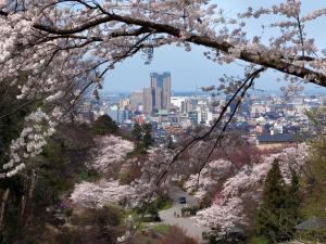 Hotel Wing International Premium Kanazawa Ekimae, Economy hotels  Kanazawa - big - 51