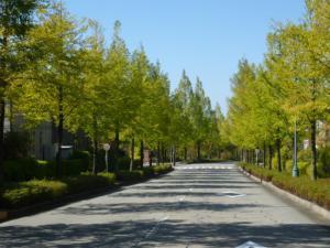 Hotel Wing International Premium Kanazawa Ekimae, Economy hotels  Kanazawa - big - 157
