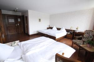 Hotel Rheinfels - Kattenhorn
