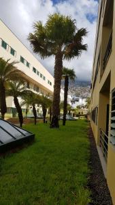Anadia Village Flat Funchal