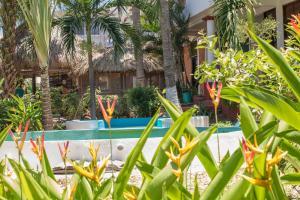 Puerto Dreams Surf House, Гостевые дома  Пуэрто-Эскондидо - big - 21
