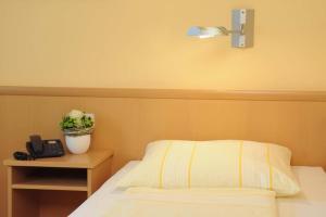 Hotel & Restaurant Hugenottengarten, Hotels  Friedrichsdorf - big - 16
