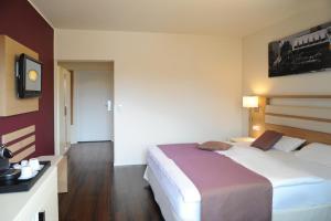 Ringhotel Goldener Knopf, Hotely  Bad Säckingen - big - 33