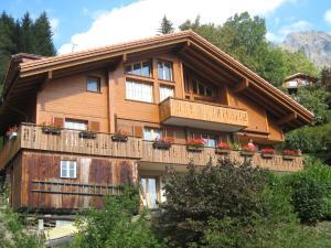Chalet Protea - Apartment - Wengen