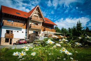 Hostels und Jugendherbergen - Pensiunea Colt de Rai