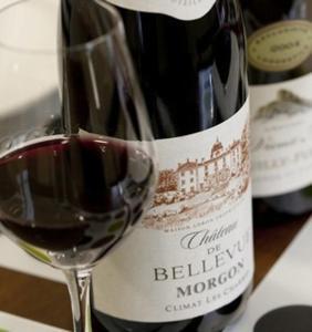 Château de Bellevue B&B, Bed & Breakfast  Villié-Morgon - big - 31