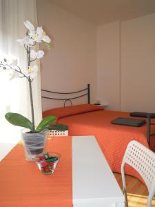 Like Home Cisanello - AbcAlberghi.com