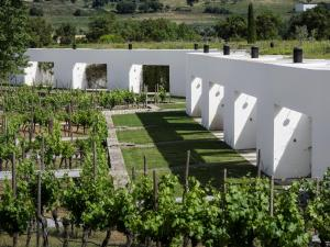 L'AND Vineyards, Rezorty  Montemor-o-Novo - big - 81