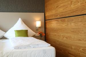 BA Hotel, Hotel  Babenhausen - big - 22