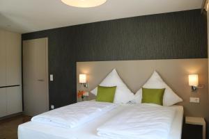 BA Hotel, Hotel  Babenhausen - big - 5