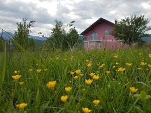 Holiday home Rose - Donja Raštelica