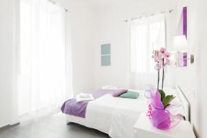 Residenza Maxima - abcRoma.com