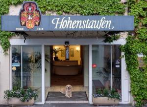 Hotel Hohenstaufen - Eschenbach