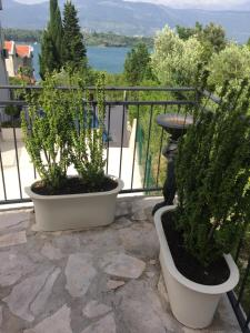 Luxury apartment Djurasevichi, Ferienwohnungen  Tivat - big - 15