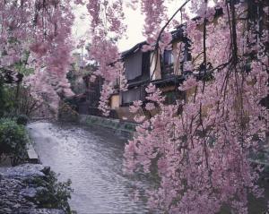 Holzbau Higashiyama, Vendégházak  Kiotó - big - 15