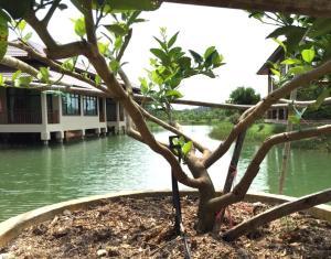 Lantala Residence - Ban Na Phong