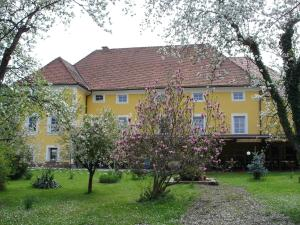 Guest House Čater