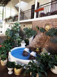 Guest House Galina - Kuchukdere