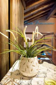 Casa Turistica Domiziano - AbcAlberghi.com