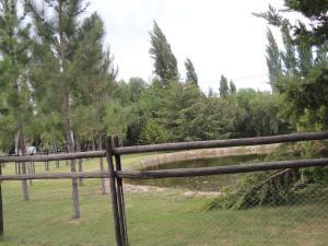 Cabaña La Ribera, Chaty  Maipú - big - 11