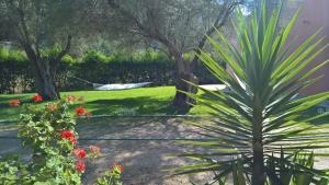 Ionian Breeze Studios, Apartments  Lefkada Town - big - 7