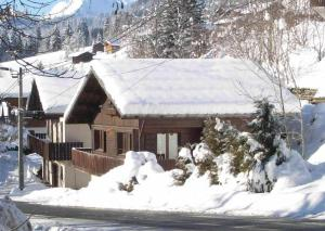 Chalet Intime - 1066 - Montriond