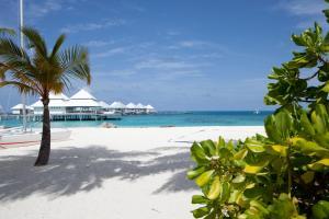 Diamonds Thudufushi Beach & Water Villas (29 of 100)