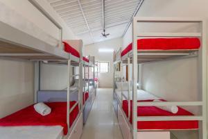 Zostel Chikmagalur, Hostelek  Csikmagalur - big - 56