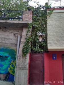 Dadu's Apartment, Апартаменты  Тбилиси - big - 42