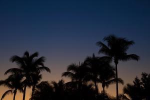 COMO Metropolitan Miami Beach (13 of 56)