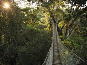 Inkaterra Reserva Amazonica (22 of 50)