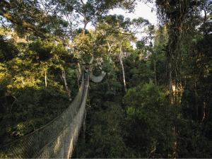 Inkaterra Reserva Amazonica (4 of 48)