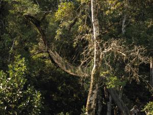 Inkaterra Reserva Amazonica (36 of 48)
