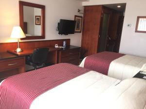 Hotel Fortin Plaza, Szállodák  Oaxaca de Juárez - big - 42