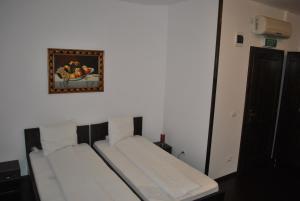 Hotel Taverna Pecicana, Hotely  Pecica - big - 8