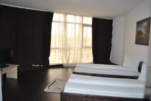 Hotel Taverna Pecicana, Hotely  Pecica - big - 13
