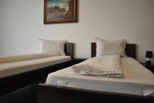 Hotel Taverna Pecicana, Hotely  Pecica - big - 4