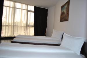Hotel Taverna Pecicana, Hotely  Pecica - big - 32