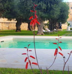 La Fiermontina Urban Resort (38 of 80)