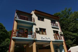 Pensiunea Pinul Negru, Бэиле-Херкулане