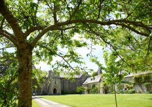 Dartington Hall (15 of 46)