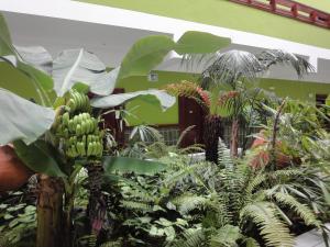 Hotel Balneario Pozo de la Salud (24 of 38)