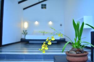 Midigama Holiday Inn