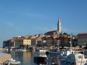 Apartments Sarc Rovinj, Appartamenti  Rovigno (Rovinj) - big - 15