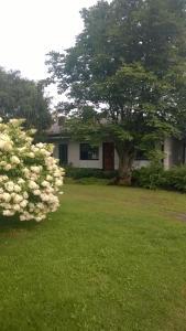 Koti Kiviniemi - Apartment - Pori