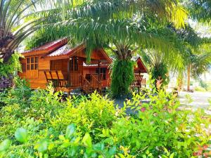 Comfy Lodge Resort - Ban Thai Chang