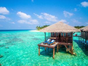 Filitheyo Island Resort (19 of 175)