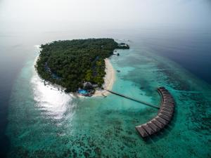 Filitheyo Island Resort (11 of 175)