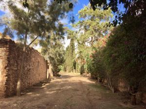 Villa du Souss Eco-Lodge, Alloggi in famiglia  Agadir - big - 11